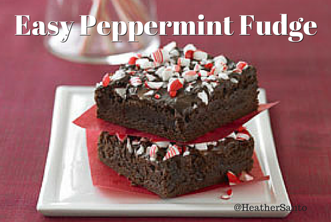 Pieces of Peppermint Fudge
